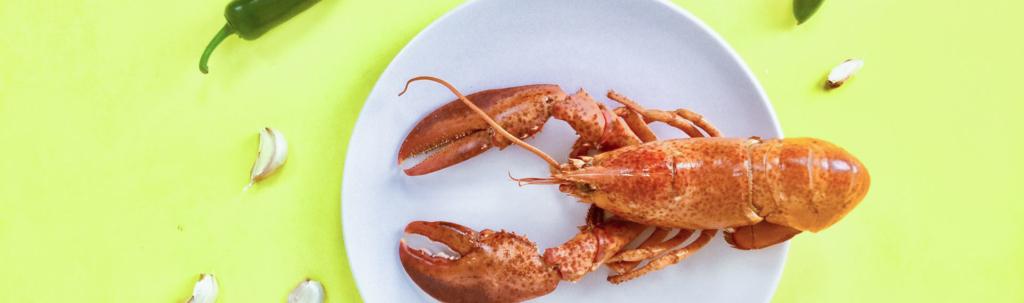 homard dans une assiette blanche