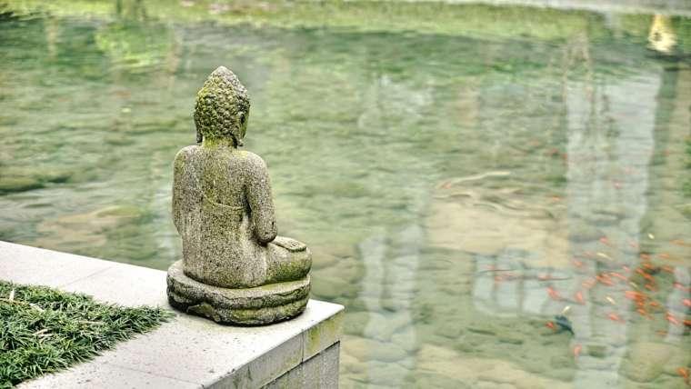 statue de boudha au bord d'un lac où nagent des poissons